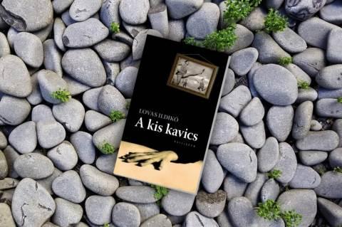 Lovas Ildikó: Kis kavics c. regényének borítója