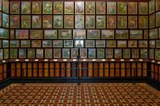 Marianne North művei a Kew Gardensben